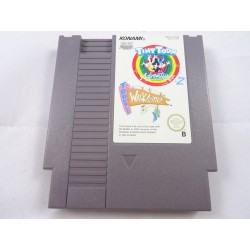 Tiny Toon Adventures 2